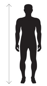 Body Height