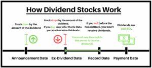 how dividend stocks work