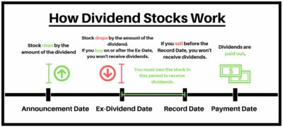 how dividend stocks work