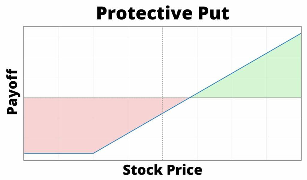 protective put hedge